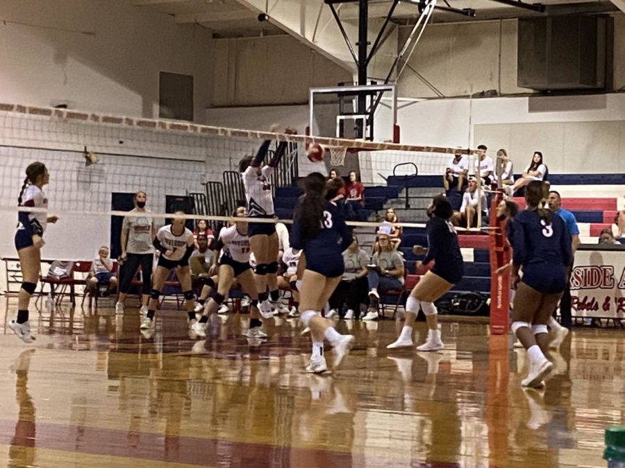 The+Lady+Rebels+volleyball+team+notched+a+huge+win+against+St.+Martins+on+Tuesday.+